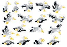 Voo do pelicano do voo no céu Imagem de Stock