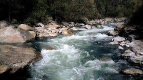 Voo do rio de Whitewater vídeos de arquivo