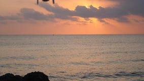 Voo do zangão no nascer do sol no mar filme