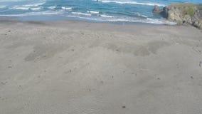 Voo do zangão sobre a praia da areia para o oceano com pairo video estoque