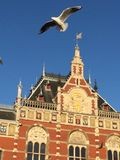 Voo dos pássaros de Amsterdão Imagem de Stock