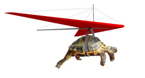 Voo engraçado da tartaruga no cair-planador fotografia de stock royalty free