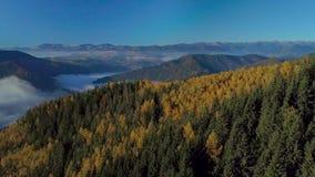 Voo nas montanhas acima da floresta enevoada da manhã video estoque