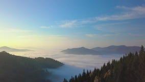 Voo nas montanhas acima da floresta enevoada da manhã filme