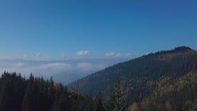 Voo nas montanhas acima da floresta enevoada da manhã vídeos de arquivo