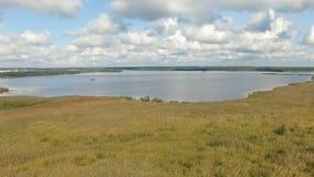 Voo para trás sobre os juncos e os arbustos amarelos do lago do pântano video estoque