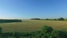 Voo a Quadrocopters sobre campos no por do sol vídeos de arquivo