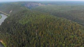 Voo sobre a floresta do abeto vermelho filme