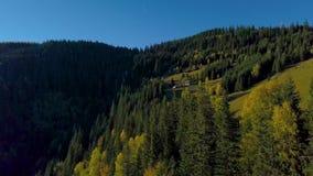 Voo sobre a floresta e a casa dos pastores nos Carpathians vídeos de arquivo