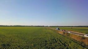 Voo sobre o campo de ervilhas verdes Avaliação aérea vídeos de arquivo