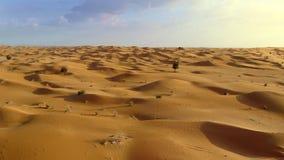 Voo sobre o deserto do Oriente Médio video estoque