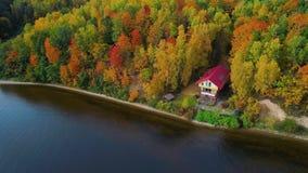 Voo sobre o lago e a floresta no outono filme