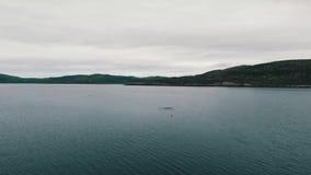 Voo sobre a tundra e os lagos Península de Kola, Rússia vídeos de arquivo