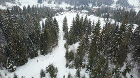 Voo sobre uma estância de esqui em montanhas Carpathian Opinião aérea os povos que descem em esquis video estoque