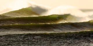 Voor de kust het surfen golven Stock Afbeeldingen