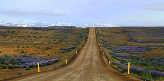 Voor de weg, IJsland stock foto