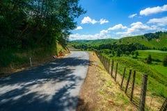Voor de weg, vergeten wereldweg, Nieuw Zeeland 1 stock foto's