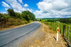 Voor de weg, vergeten wereldweg, Nieuw Zeeland 4 royalty-vrije stock foto's