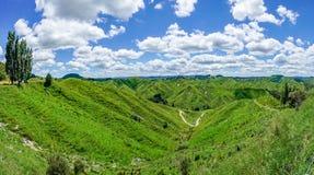 Voor de weg, vergeten wereldweg, Nieuw Zeeland 11 stock fotografie