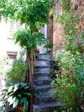 Voor-deur Stock Fotografie