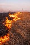 Voor een hete de zomerdag, brandt het droge gras op het gebied burning royalty-vrije stock afbeelding