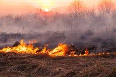 Voor een hete de zomerdag, brandt het droge gras op het gebied burning stock afbeelding