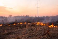 Voor een hete de zomerdag, brandt het droge gras op het gebied burning stock foto's