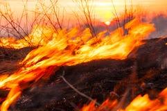 Voor een hete de zomerdag, brandt het droge gras op het gebied burning royalty-vrije stock fotografie