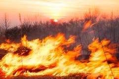 Voor een hete de zomerdag, brandt het droge gras op het gebied burning royalty-vrije stock afbeeldingen