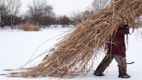 Voor een ijzige sneeuw de winterdag, draagt de dorpsbewoner droog die riet op zijn rug in een hooiberg over een snow-covered te v stock footage