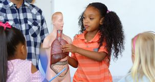 Vooraanzicht van Afrikaans Amerikaans schoolmeisje die menselijk skeletmodel in het klaslokaal 4k verklaren stock videobeelden
