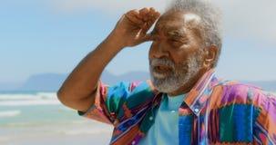 Vooraanzicht van de actieve hogere Afrikaanse Amerikaanse mens met hand op kin en hand achter hoofd bij strand 4k stock videobeelden