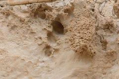 Vooraanzicht van de natuurlijke achtergrond van geel kalksteen met de hobbelige oppervlakte met donkere holten die door het overz stock afbeelding