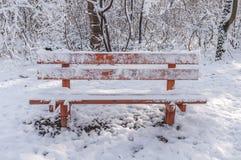 Vooraanzicht van rode houten bank die met sneeuw in het bos wordt behandeld Royalty-vrije Stock Afbeeldingen