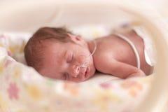 Voorbarig pasgeboren babymeisje Stock Foto's