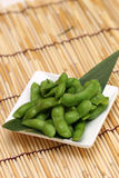 Voorbereid en heerlijk Japans voedsel royalty-vrije stock afbeeldingen