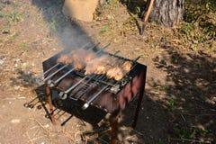 Voorbereiding, het Koken kebabs op houtskool openlucht stock foto's