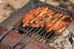 Voorbereiding, het Koken kebabs op houtskool openlucht stock afbeeldingen