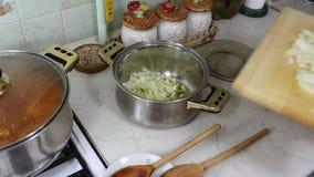 Voorbereiding van lasagna. Stock Afbeeldingen