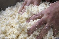 Voorbereiding van mozarella in een zuivelfabriek Royalty-vrije Stock Fotografie