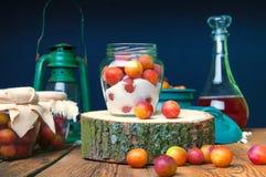 Voorbereiding van pruimen met suiker in kruiken voor de winter Stock Afbeeldingen