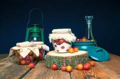 Voorbereiding van pruimen met suiker in kruiken voor de winter Stock Foto's