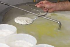 Voorbereiding van ricotta in een zuivelfabriek Stock Foto