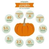 Voordeelgezondheid van pompoen, vector van het informatie de grafische voedsel Stock Foto's