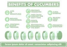 Voordelen van Komkommers Infographics - Vector vlak ontwerp Stock Foto's