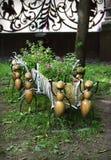 Voorgeheugen-pot met mieren Stock Foto's