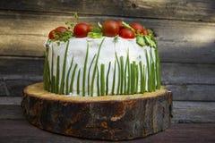 Voorgerecht met kaas en groenten royalty-vrije stock foto