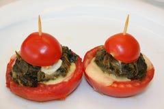 Voorgerecht van tomaat royalty-vrije stock fotografie