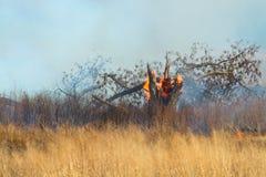 Voorgeschreven Brandwond van grasland Royalty-vrije Stock Afbeeldingen