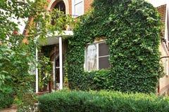 Voorgevel van counrty huis met groene klimop Royalty-vrije Stock Foto's
